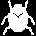 noun_Insect_3666019